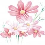 flower0492